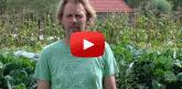 De tuinder aan het woord