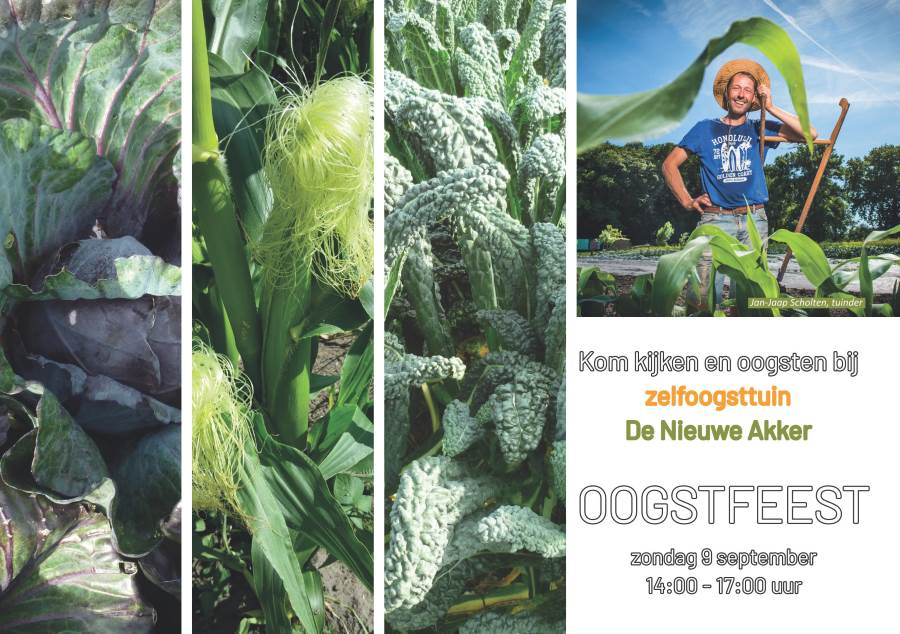 Oogstfeest 2018 09 09 01